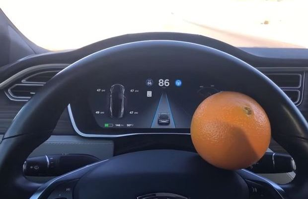 Tesla'yı portakalla kandırdı